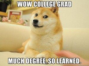 Degree, or no degree?