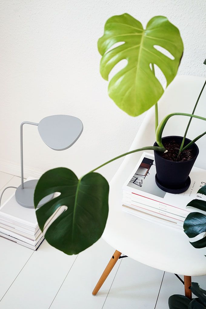 Minimal Living Vignette Leaf Green Nature Interior 400 x 300
