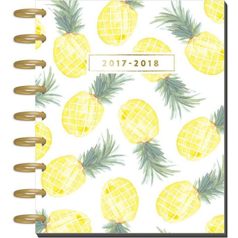 2017-2018 Classic Happy Planner - Flamingo Bullet Journal - resumes 2018