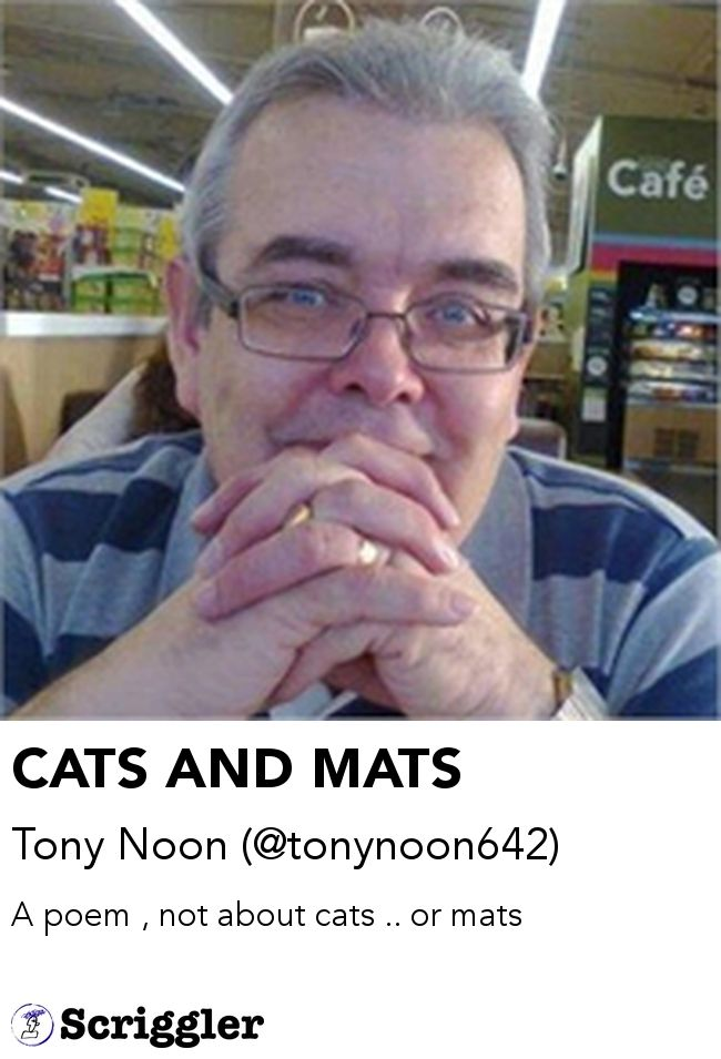 CATS AND MATS by Tony Noon (@tonynoon642) https://scriggler.com/detailPost/story/60091 A poem , not about cats .. or mats
