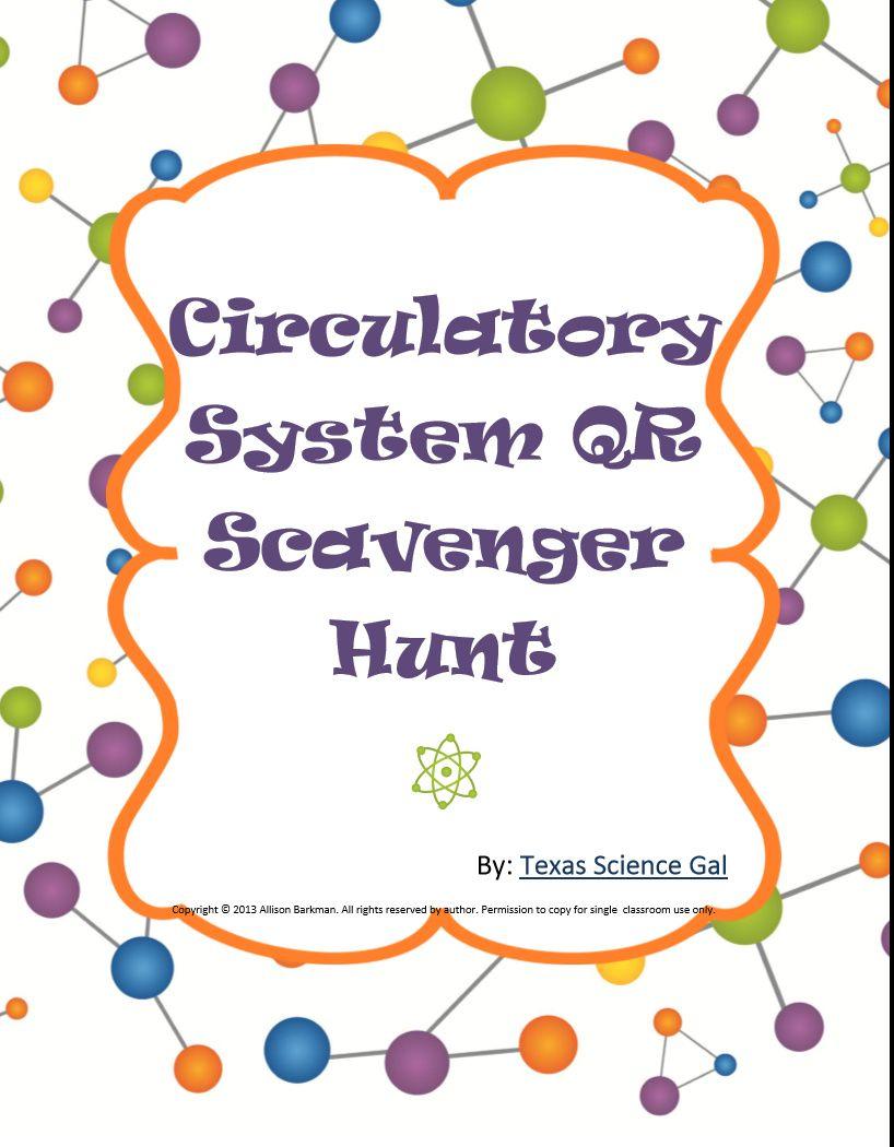 Circulatory System Qr Scavenger Hunt Circulatory System Teaching Biology Secondary School Science