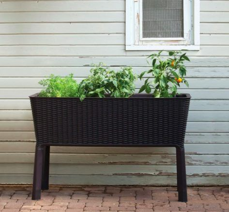 Keter Easy Grow Self Watering Raised Garden Bed - #ApartmentLiving #GiftIdeas #PotsandStands #SelfWatering #ShipstoUS #plantstyling