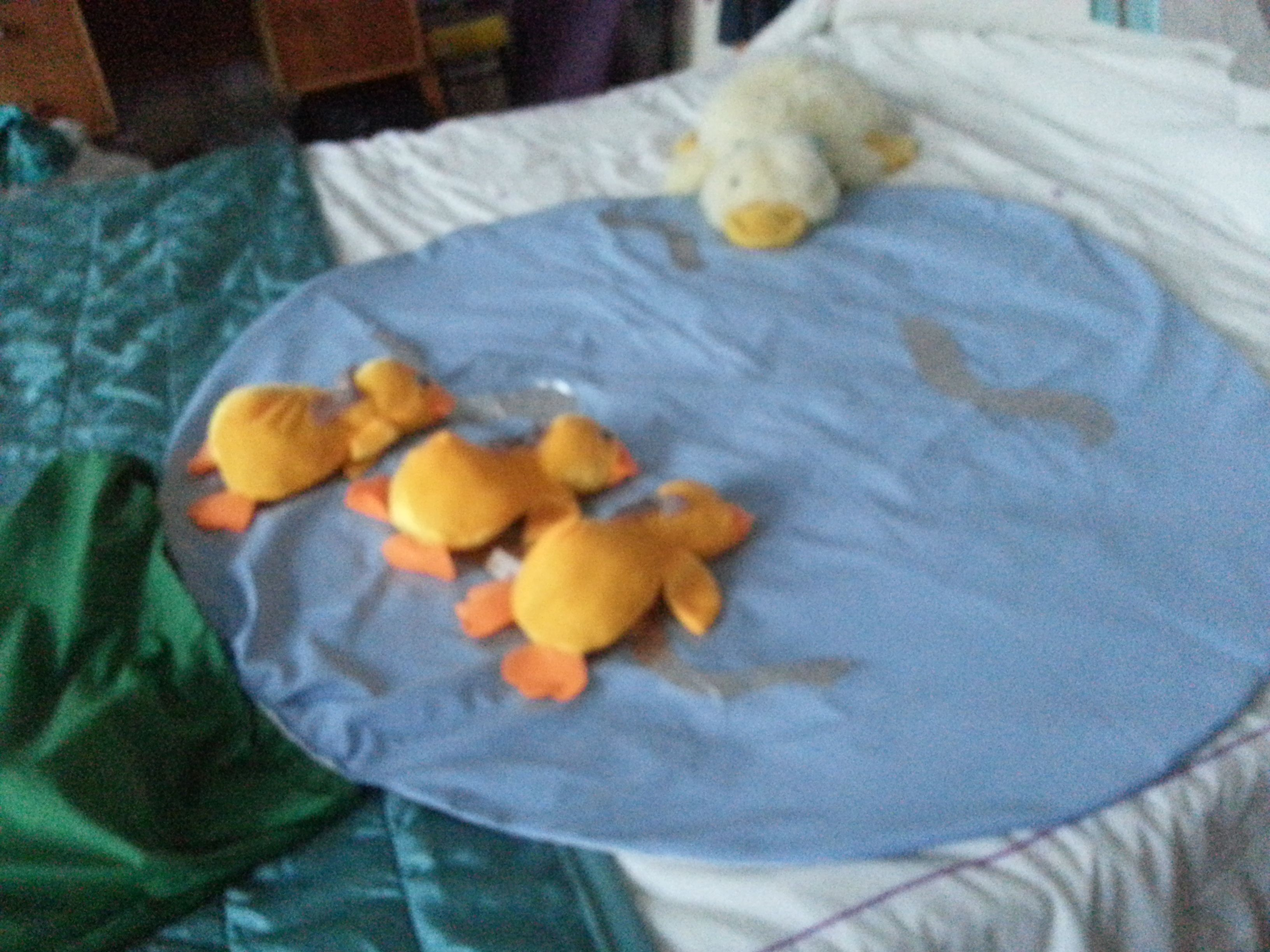 5 3 Little Ducks Went Swimming One Day Maths Activity For
