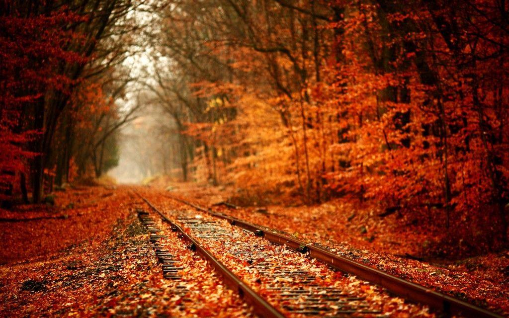 autumn-hd-wallpaper-with-railtracks-in-autumn