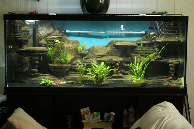 Make a 3d aquarium background aquarium backgrounds for Diy fish tank decor