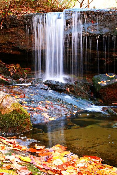 Ft Payne Alabama To Do Some Hiking In The Little River Canyon Desoto State Park Area Love This Place It S Beautiful