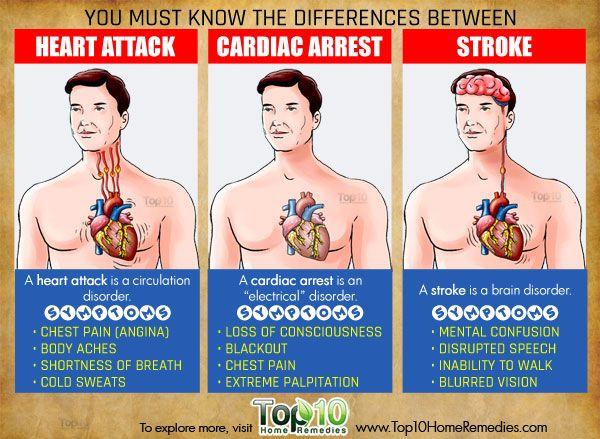 Understanding Heart Attack Cardiac Arrest And Stroke Top 10 Home Remedies Cardiac Arrest Heart Attack Cardiac