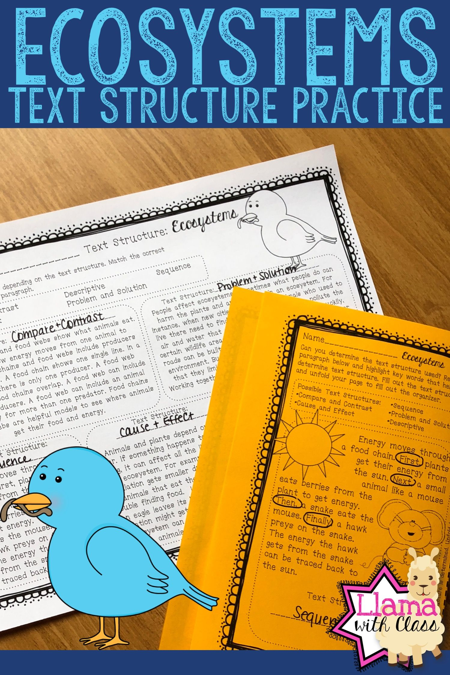 Ecosystems Text Structure Worksheets