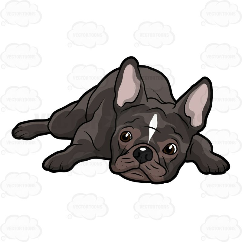 47++ French bulldog puppy clipart information