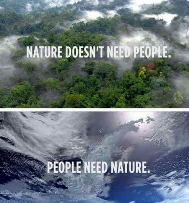 25 Pics That Speak The Truth Nature Quotes Mother Nature Quotes Save Nature