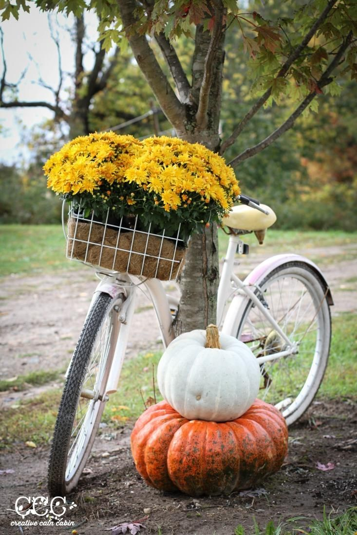 18 Bicycle Planter Ideas Diy Tutorials For Summer Fall 400 x 300