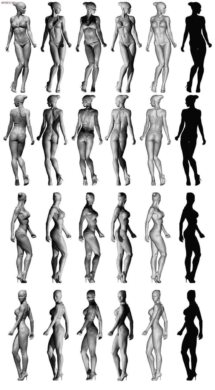 human reference figure Art nude