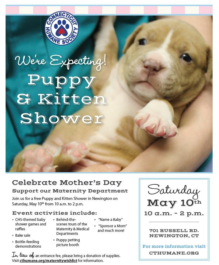 Connecticut Humane Society S Puppy Kitten Shower For Shelter Pets Will Be Held On Saturday May 10th From Bottle Feeding Puppies Kitten Season Feeding Puppy