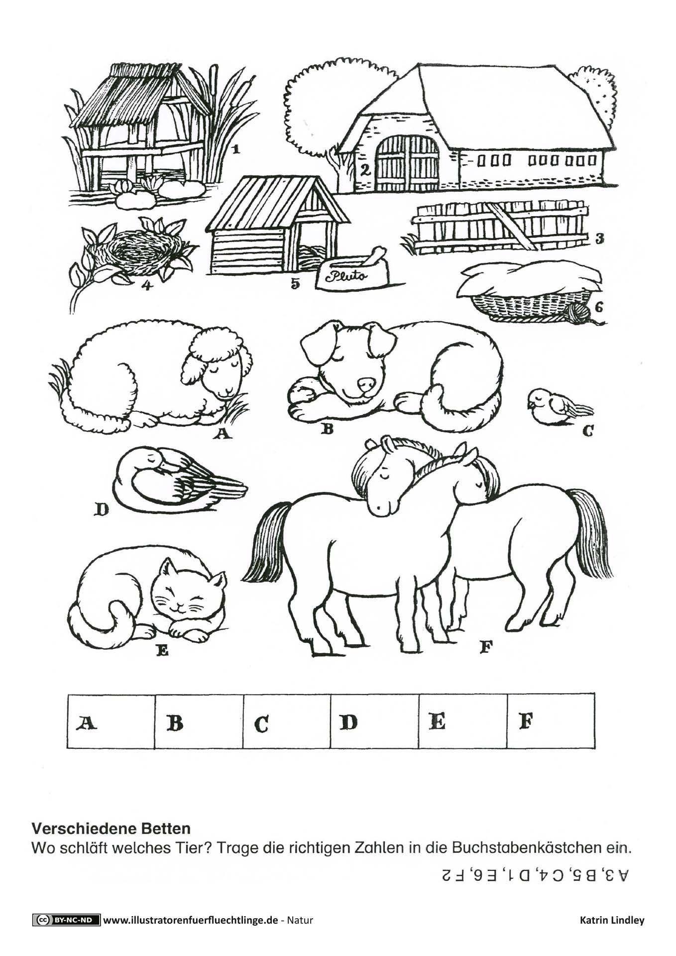 Bauernhof Wo Schlafen Die Tiere Ratsel Bauernhof Tiere Bauernhof Thema Bauernhof