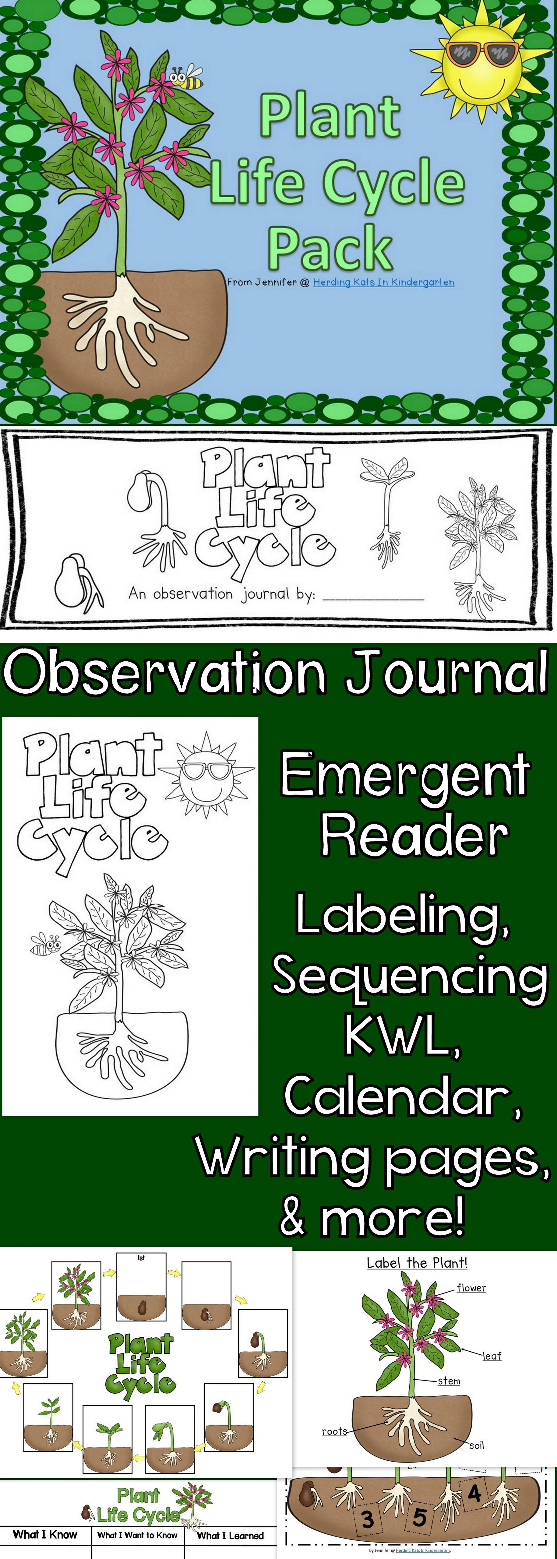 Plant Life Cycle Pack Including Observation Journal Labeling Pages And More