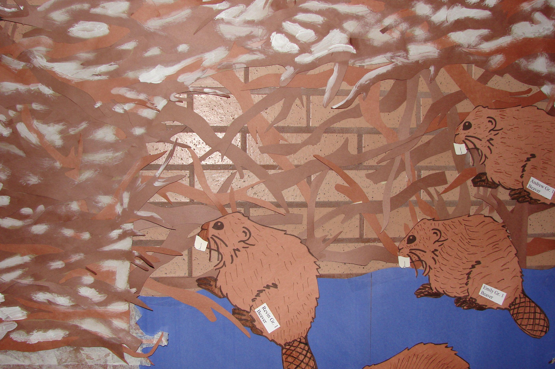 beavers Wallpaper, Beaver, Animals