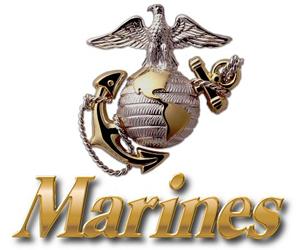 Happy 237th Birthday Marines My Nephew Ryan B Has Been In The Marines For Almost 20 Years Marines Logo Marines United States Marine Corps