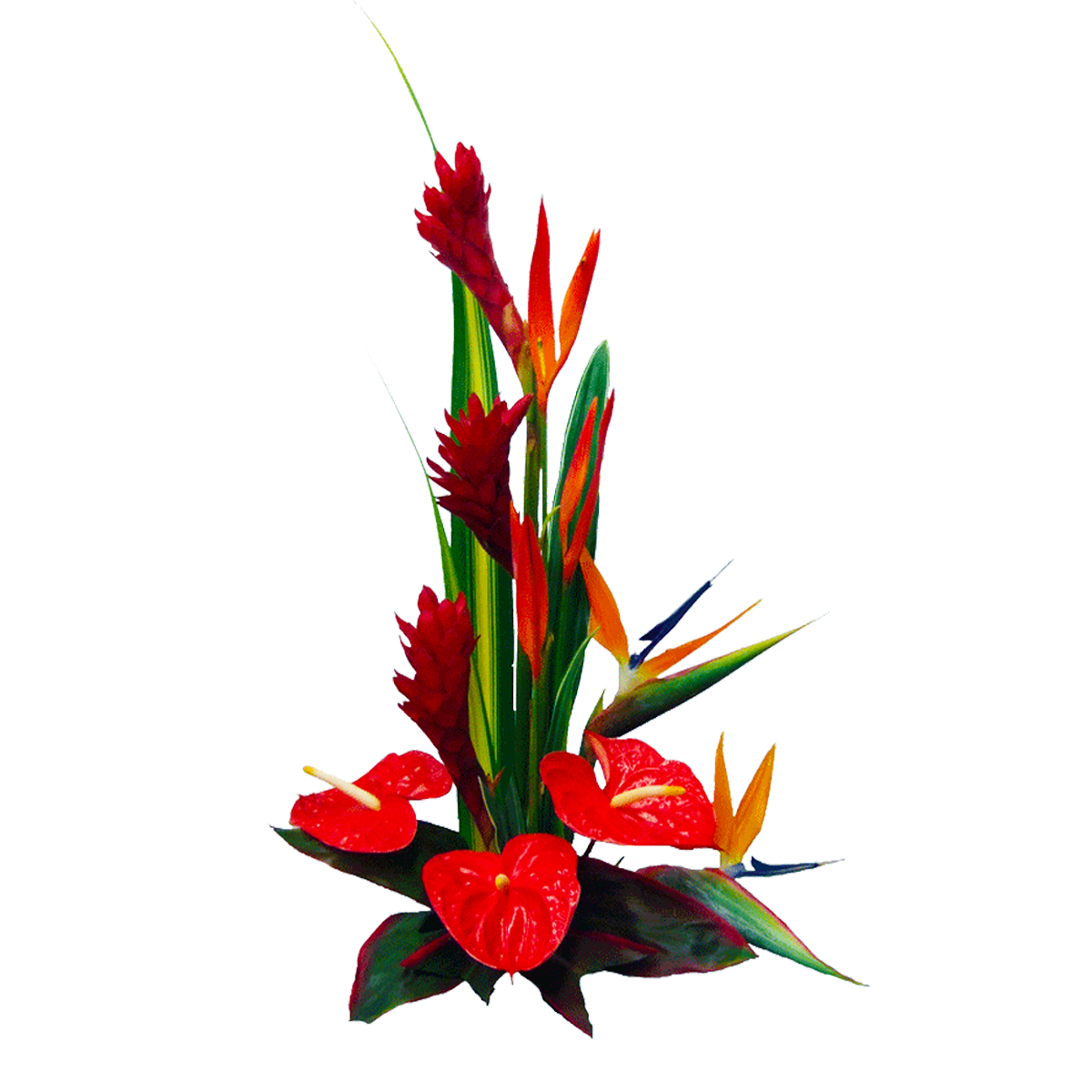 Summer Daze Tropical Hawaiian Flowers Bouquet | Hawaiian Flowers ...