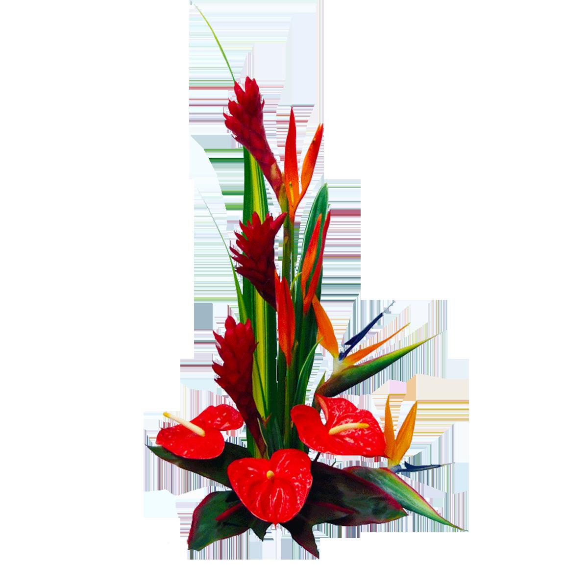 Summer daze tropical hawaiian flowers bouquet hawaiian flowers summer daze tropical hawaiian flowers bouquet hawaiian flowers tropical izmirmasajfo