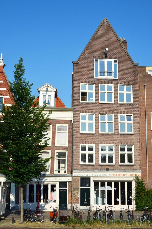 De quelle planete es tu - Amsterdam 3