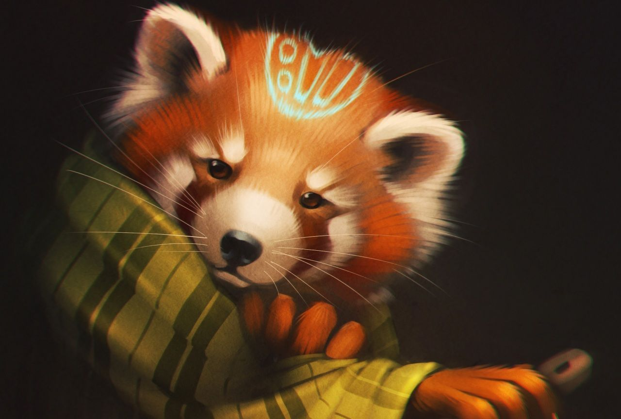 Petit Panda Panda Roux Dessine Ours Animaux Art De Panda Panda