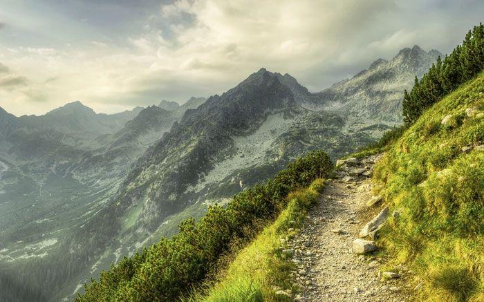 Ort In Der Schweiz Mit 5 Buchstaben