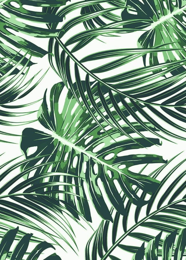 Tropical Leaves 4 Art Print By Andreas12 X Small In 2020 Tropical Wallpaper Mint Green Wallpaper Iphone Plant Wallpaper Published by april 1, 2020. mint green wallpaper iphone