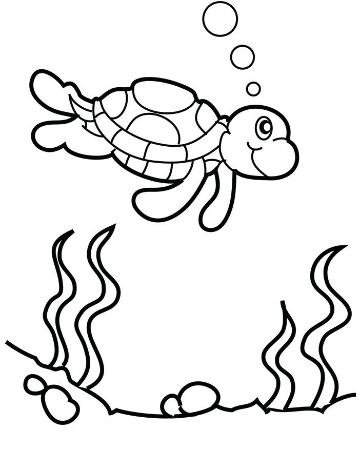 The Turtle Swims In Water Coloring Page Turtle Coloring Pages
