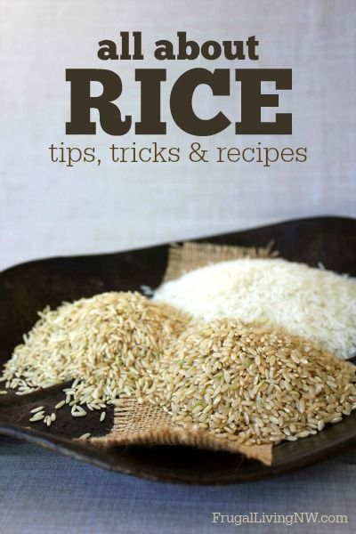 All About Rice: Everything you need to know about rice, including tips, terms & tons of delicious rice bowl recipes!