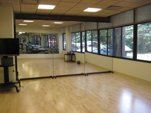 Glassless Mirror Manufacturers Dance Mirrors Home Dance Studio Dance Rooms