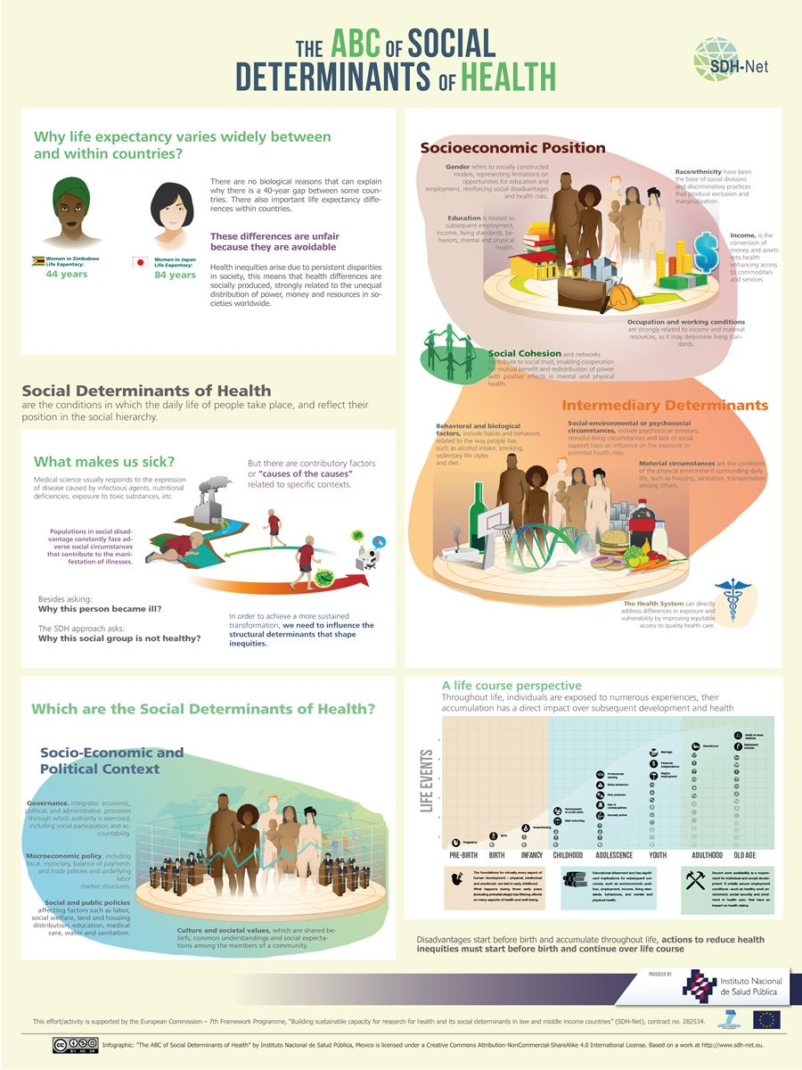 Nutritional Wellness Store Infographic Health Social Determinants Of Health Wellness Store