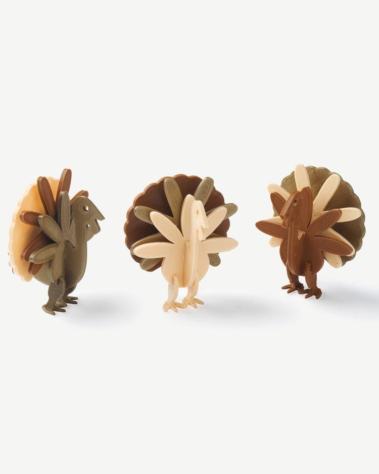 3D Printed Turkey Puzzle