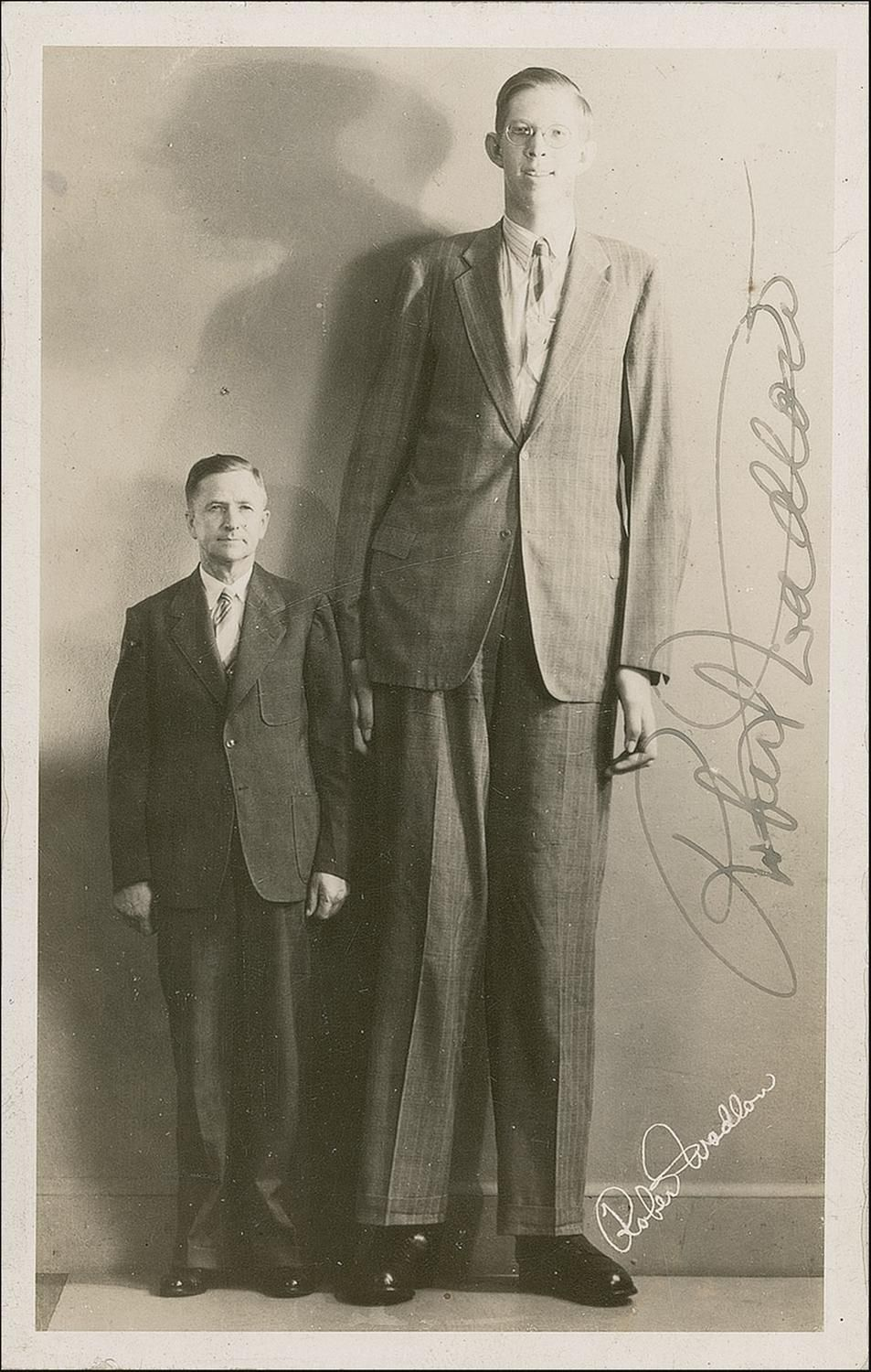 robert wadlow tallest man ever at 8ft 11 1 in born in alton il