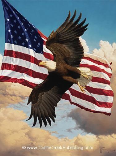 Wildlife Artist Tom Mansanarez Official Web Site American Flag Art American Flag Eagle Eagle Pictures