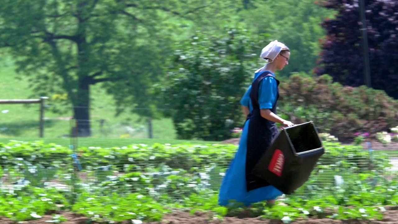 Amish lancaster pennsylvania lancaster pennsylvania