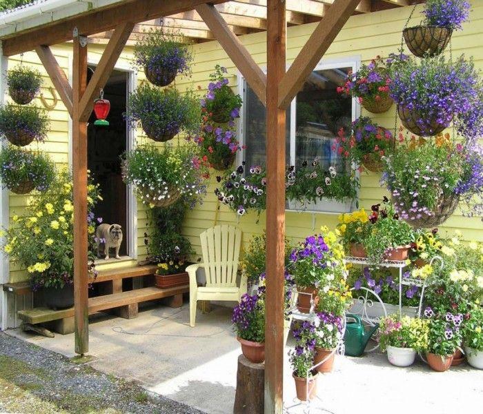 Garden Trees Wooden Outdoor Bech Rooftop Garden Garden: Amazing Techniques To Decorate Your Pergola