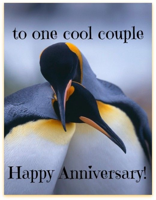 To one cool couple anniversary wedding happy