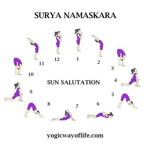 surya namaskara  the sun salutation  surya namaskara