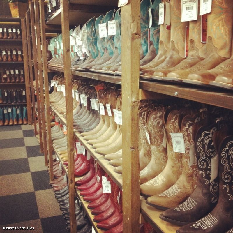 Cavenders The Best Place For Boots Arlington Texas With Images Rio Photos Texas Baby Texas Living
