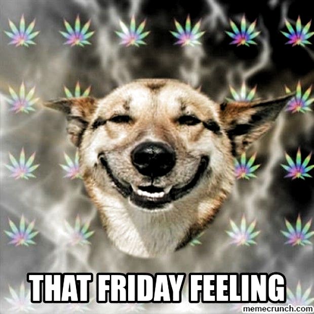 friday memes hilarious friday meme + friday meme funny + friday memes work + friday meme humor