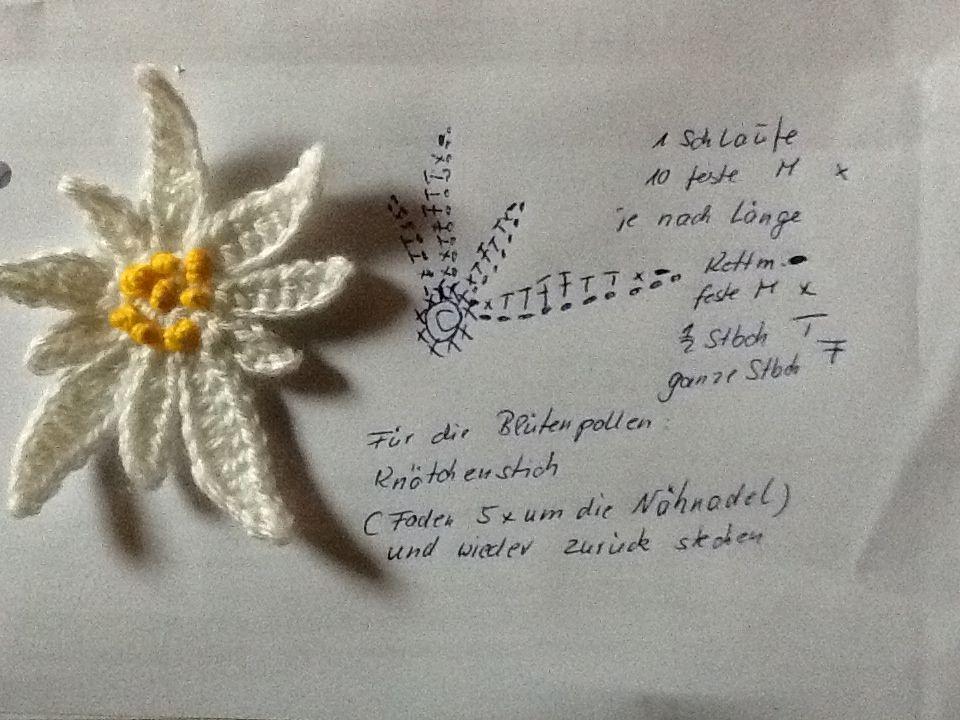 mein erstes Edelweiß | Edelweiss | Edelweiss by Jean Cross ...