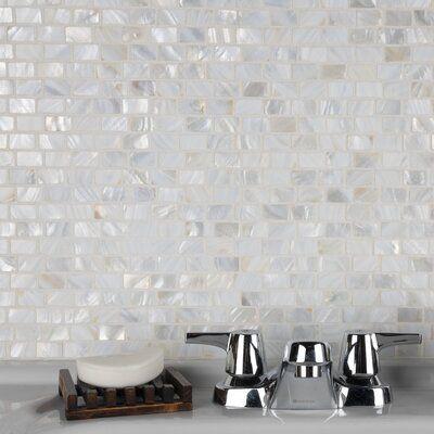 Elitetile Shore 1 X 1 Seashell Random Mosaic Tile Glass Mosaic Tiles Mosaic Tiles Mosaic Wall Tiles