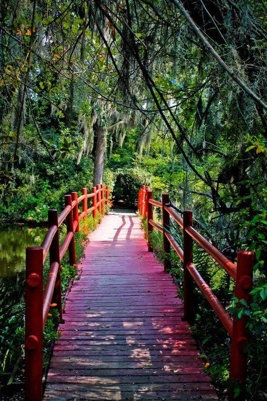 Magnolia Plantation, Charleston SC Charleston south