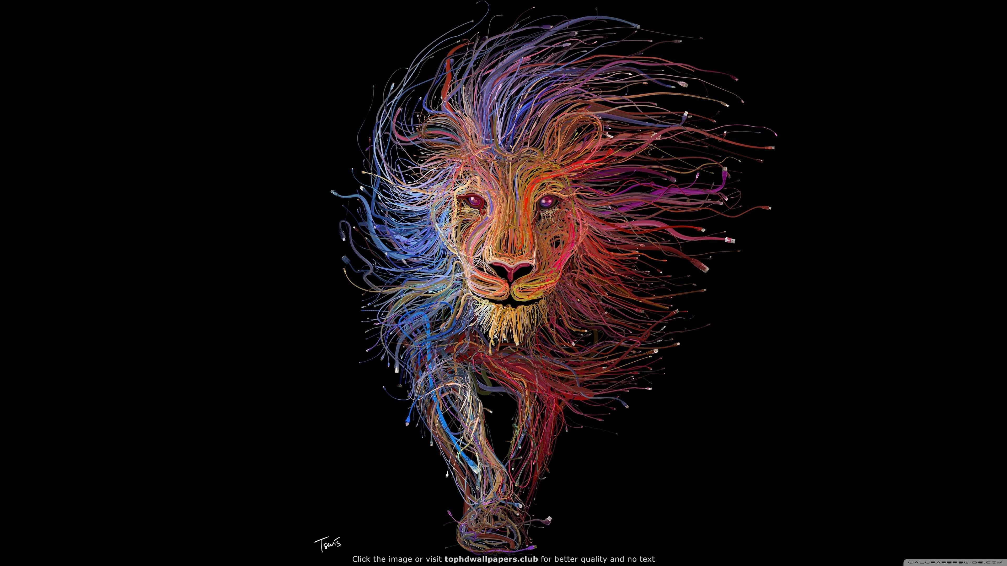 Lion King 4k Wallpaper Lion Artwork Lion Illustration Lion Canvas