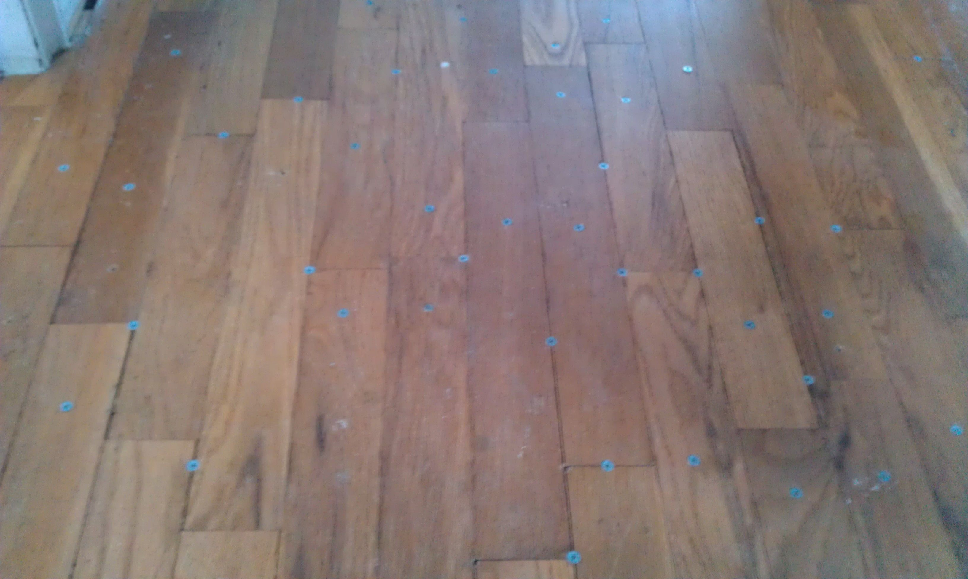 I M Pretty Certain That Driving Screws Into Your Beautiful Hardwood Floor Is Not Going To Fix That Squeaky Hallway What A Hardwood Floors Hardwood Flooring