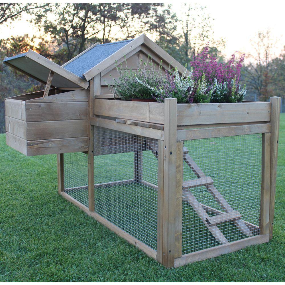 Construire Un Carré Potager poulailler lucky 2 à 3 poules + carré potager | chickens