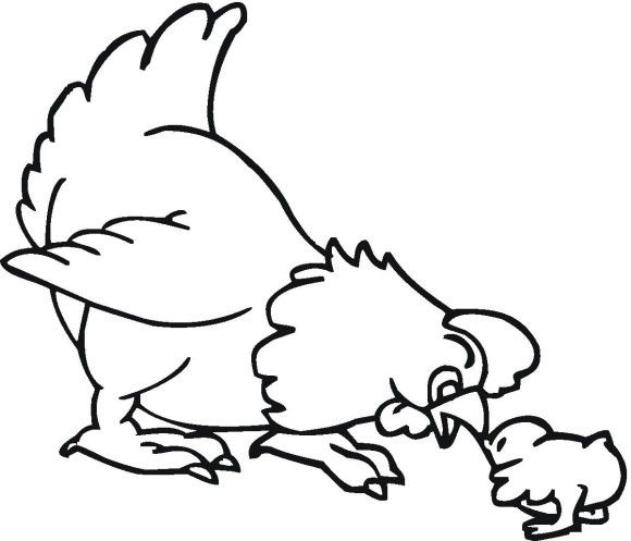 Little Chick And Hen Farm Animal Coloring Pages | coloring pages ...