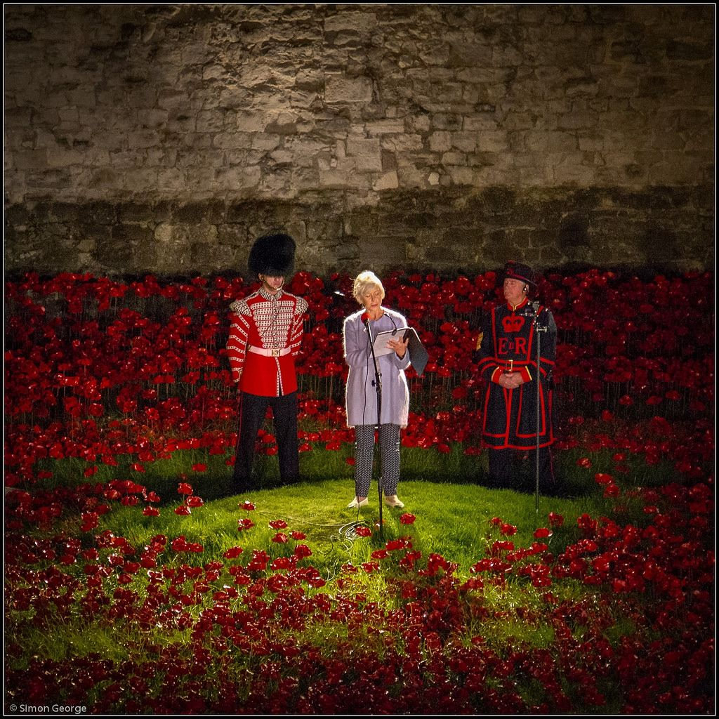 Tower Of London Poppy River Of Blood My England Pinterest - Tower of london river of poppies
