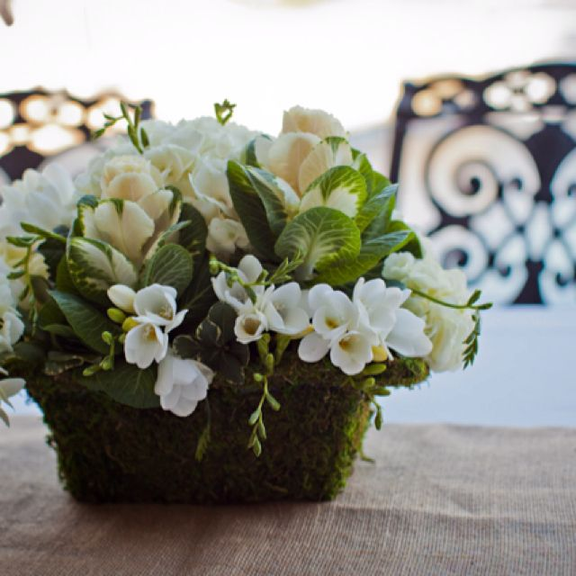 All white in moss basket