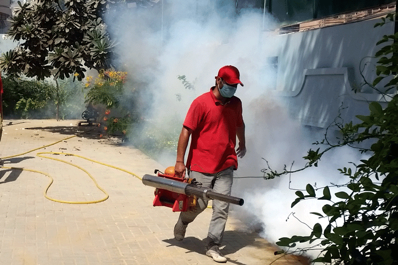 Fogging Spray For Mosquitoes Fogging Spray For Mosquitoes Ghar Flats Companies And Factories Me Mosquit Insect Control Mosquito Fogger Best Pest Control